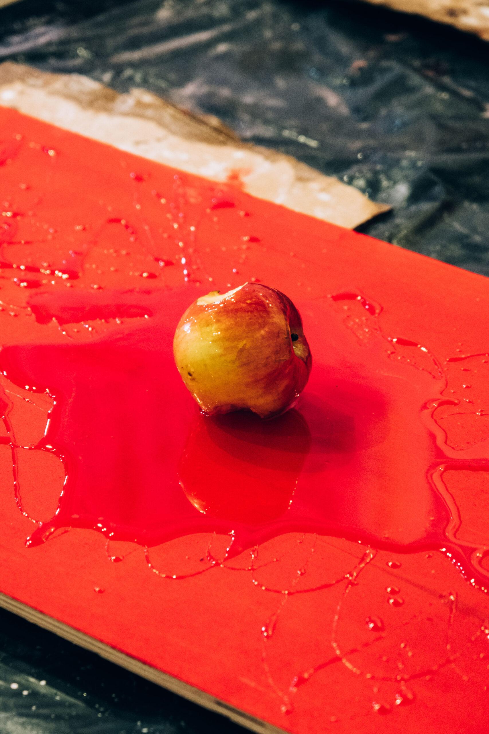 la-pomme-de-vie-fine-arts-performance-10